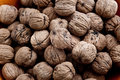 Free Pile Of Walnuts Royalty Free Stock Image - 9236366
