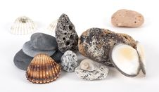 Free Shells And Stones Royalty Free Stock Photo - 9230335