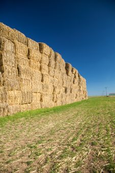Free Pile Of Hay Stock Images - 9232744