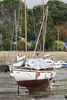 Free Sailboat Royalty Free Stock Images - 9235269