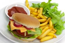 Free Hamburger With Lettuce,cheddar,tomato Royalty Free Stock Photos - 9237198