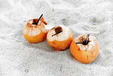 Free Coconut Drink Stock Image - 9238401
