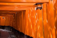 Free Fushimi Inari Shrine Stock Photos - 9239593