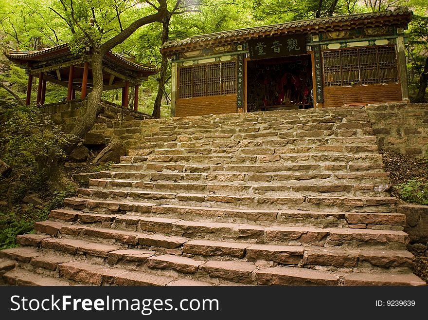 Stairs leading up to a temple in the woods