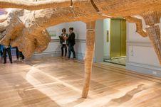 Free Wood, Interior Design, Art, Flooring Stock Photography - 92329702