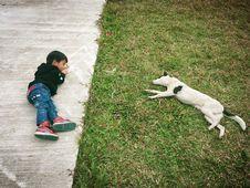Free 40/365 Hi, Doggy Stock Photography - 92329832