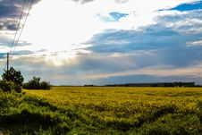 Free Fields And Sky Stock Photos - 92331283