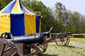 Free Cannons Stock Photos - 9246343