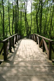 Free Wooden Bridge Royalty Free Stock Photography - 9240317