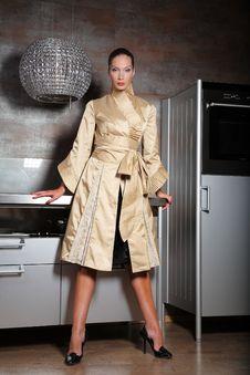 Free Woman On A Kitchen Stock Photo - 9241040