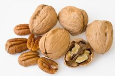 Free Nuts Royalty Free Stock Photo - 9241095