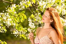 Free Woman Under Blossom Tree In Spring Stock Images - 9243084