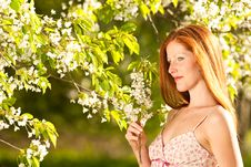 Free Woman Under Blossom Tree In Spring Stock Images - 9243094