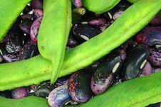 Free Wax Beans. Stock Photo - 9243840