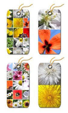 Free Gift Tag Whis  Flowers Royalty Free Stock Image - 9246126