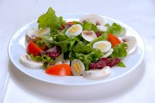 Free Salad Stock Photography - 9246252