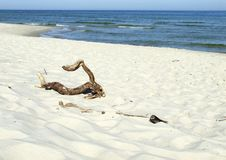 Free Beach And Sea Royalty Free Stock Images - 9247399