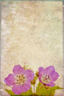Background Image With Floral Elements Royalty Free Stock Photo