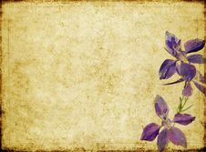 Free Background Image With Floral Elements Stock Images - 9248154