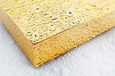 Free Condensation Stock Photo - 9248240