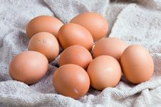 Free Chicken Eggs On A Sacking Stock Photo - 9248300