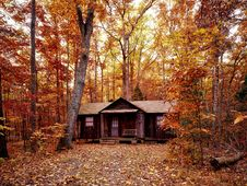 Free Cabin In Autumn Forest Stock Image - 92427981