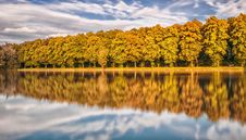 Free Trees Reflecting From Lake Royalty Free Stock Photos - 92460218