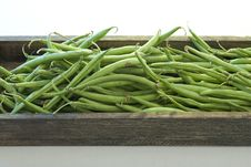 Free Green Beans Stock Photo - 9252410