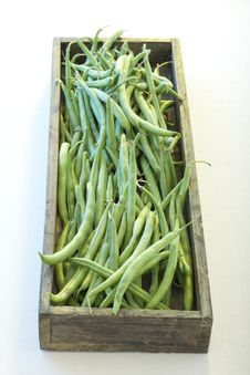 Free Green Beans Stock Images - 9252494