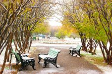 Park Bench Covered With Snow Royalty Free Stock Photos