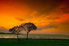 Free Sunset Royalty Free Stock Photo - 9255615