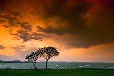 Free Sunset Stock Photo - 9255990