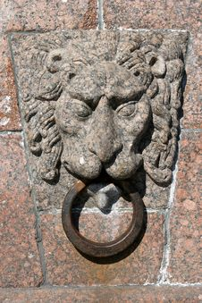 Free Lion Head Royalty Free Stock Photography - 9257157