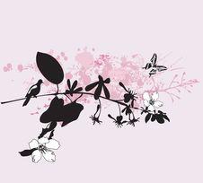 Free Spring Background Stock Photo - 9257330