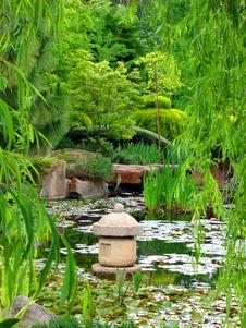 Free Japanese Water Garden Royalty Free Stock Photo - 9257505
