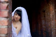 Free Pretty Bride Royalty Free Stock Images - 9257579