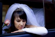 Free Pretty Bride Royalty Free Stock Photography - 9257597