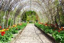 Free Beautiful Garden Stock Photos - 9257923