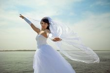 Free Pretty Bride Stock Images - 9258144