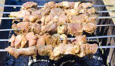 Free Shish Kebab Royalty Free Stock Images - 9259369
