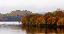Free Riverbank Foliage Stock Images - 92590044