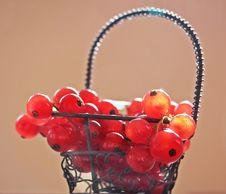 Free Red Cherries On Silver Metal Basket Photo Royalty Free Stock Photos - 92590428
