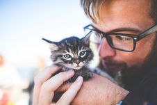 Free Man In Black Framed Eyeglasses Holding Tiger Tabby Kitten Stock Images - 92590454