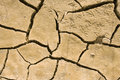 Free Animal Footprints In Dried Earth Stock Photography - 9262732