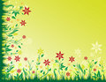 Free Green Floral Background Stock Image - 9264111