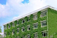 Free Green Buildings Royalty Free Stock Image - 9261376