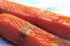 Free Raw Salmon Flesh Royalty Free Stock Images - 9261979