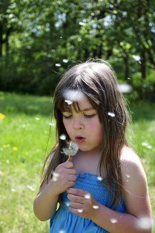Free Little Girl Closeup Portrait Stock Photography - 9262342
