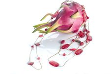 Free Red Necklace And Dragon Fruit Stock Photo - 9262500