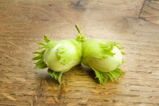 Free Pair Of Unripe Hazelnuts Royalty Free Stock Photography - 9262897